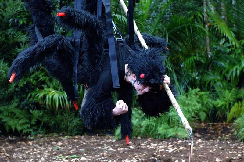 Spinnenfrau Larissa im Dschungelcamp