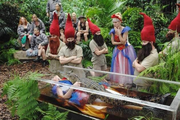 11 Promi-Zwerge im Dschungelcamp