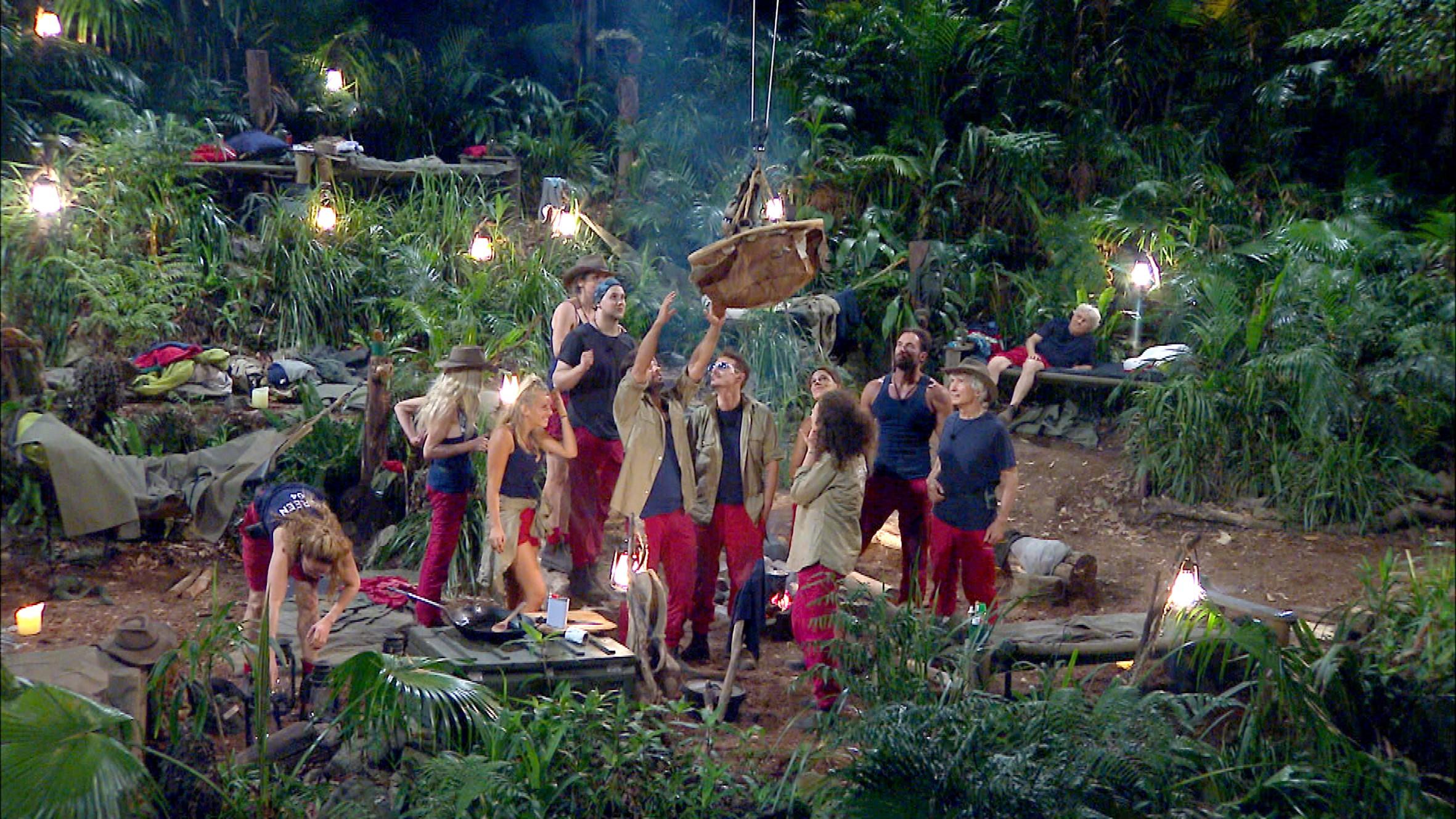 Essen kommt ins Dschungelcamp