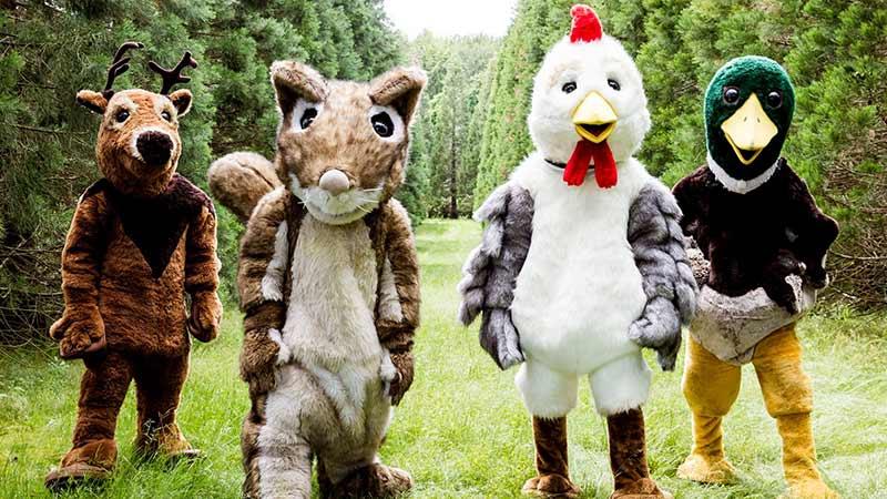 Kandidaten von Wild im Wald