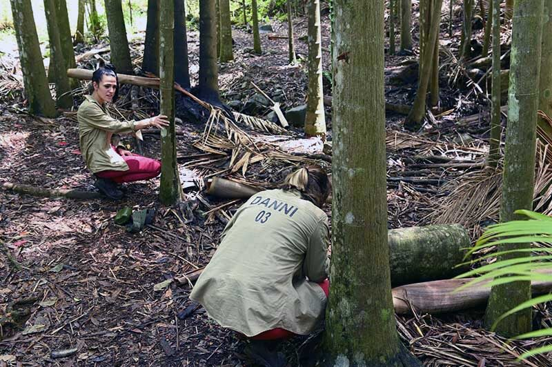 Danni kotzt in den Dschungel, steckt sich den Finger in den Hals